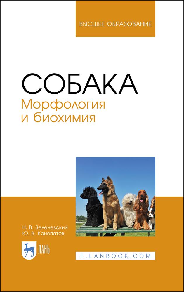 Собака. Морфология и биохимия. Учебное пособие для вузов, 2-е изд., стер. - фото
